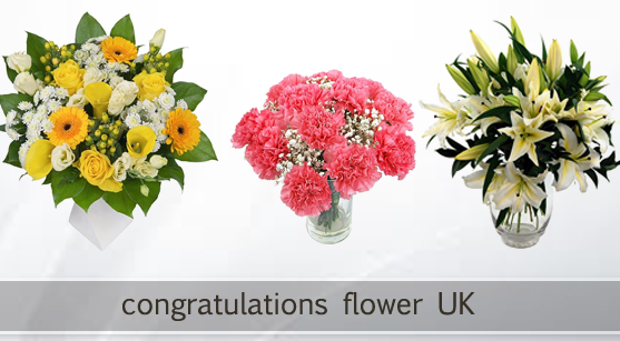 Wishful Congratulations with Blossoming Flowers