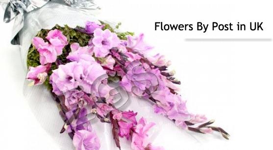 Artificial Flowers like Silk Flowers