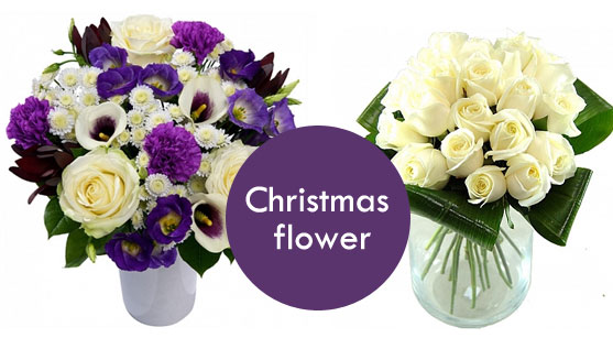 10 tips for happy christmas time flower gift ideas kinds of 10 tips for happy christmas time mightylinksfo