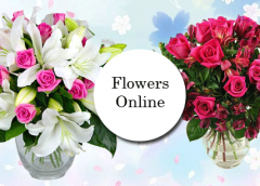 Send Your Favourite Blossoms Abroad Safely