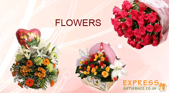 FLOWERS: AN EVERLASTING TRADITION ON CHRISTMAS. / CHRISTMAS FLOWERS:  AN EVER GREEN TRADITION