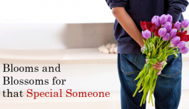 Blooms and Blossoms for that Special Someone