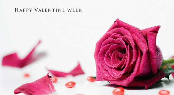 31_valenties-week