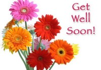 How you can select the best get well soon flowers?